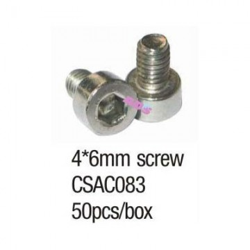4*6mm SS screw
